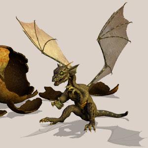 www.dragosien.de_img_z_dragon2.jpg